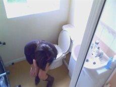 skritaya-kamera-v-tualete-ofisa